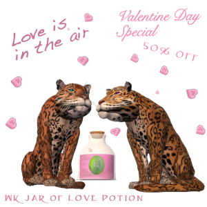 Love Postion on Sale