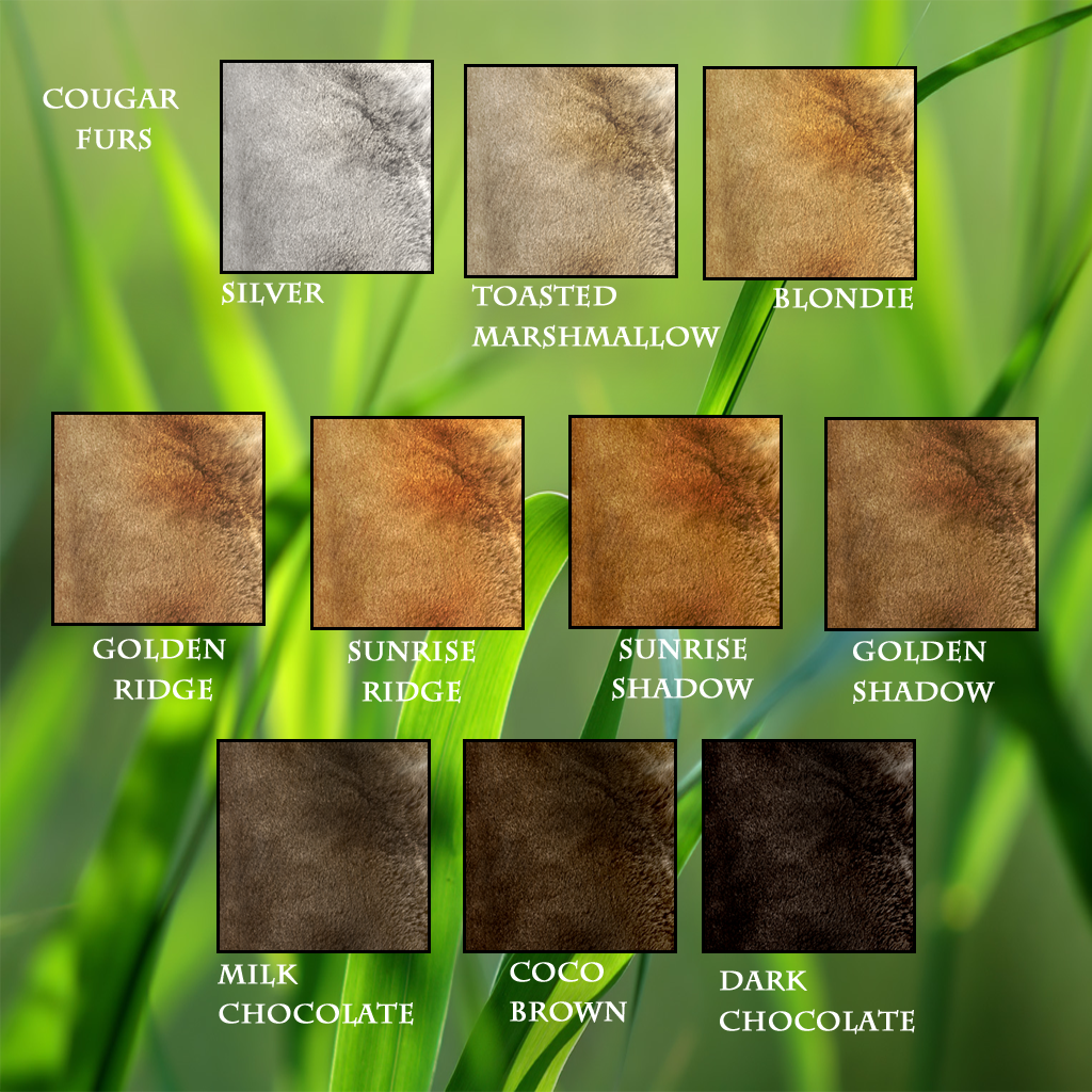 Cougar Furs Chart