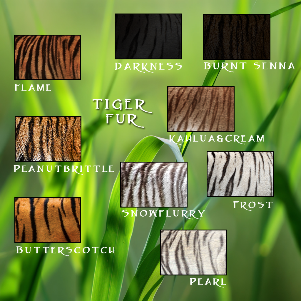 TIGER Furs Traits