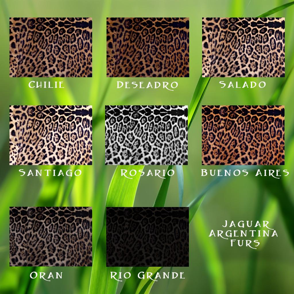 Argentina Furs