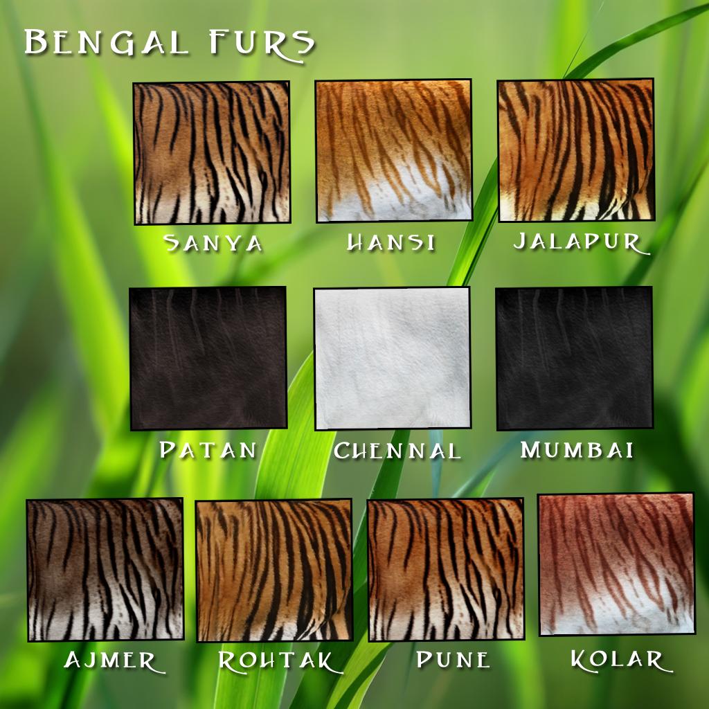 Bengal Furs