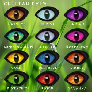 Cheetah Eye Traits