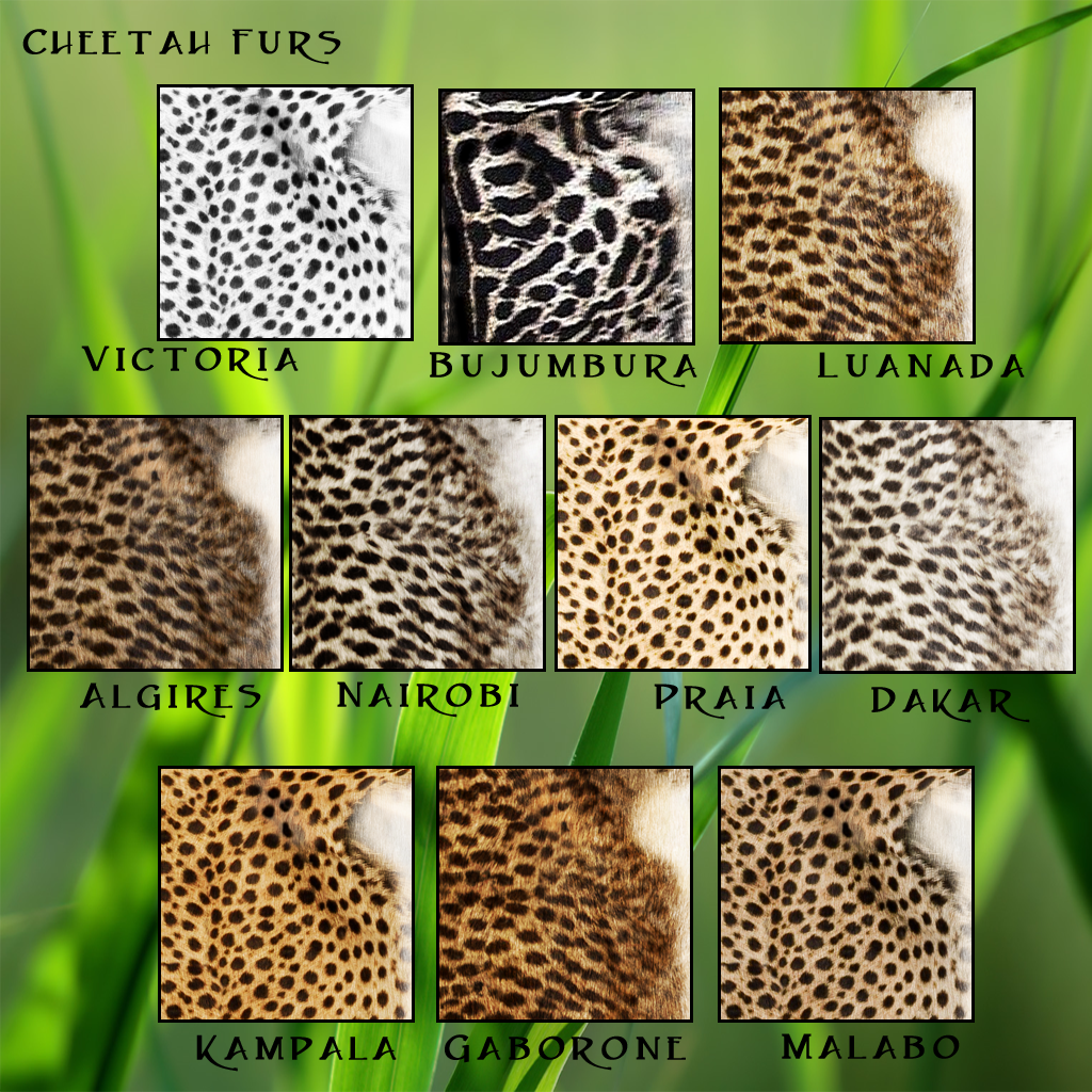 Cheetah Fur Traits