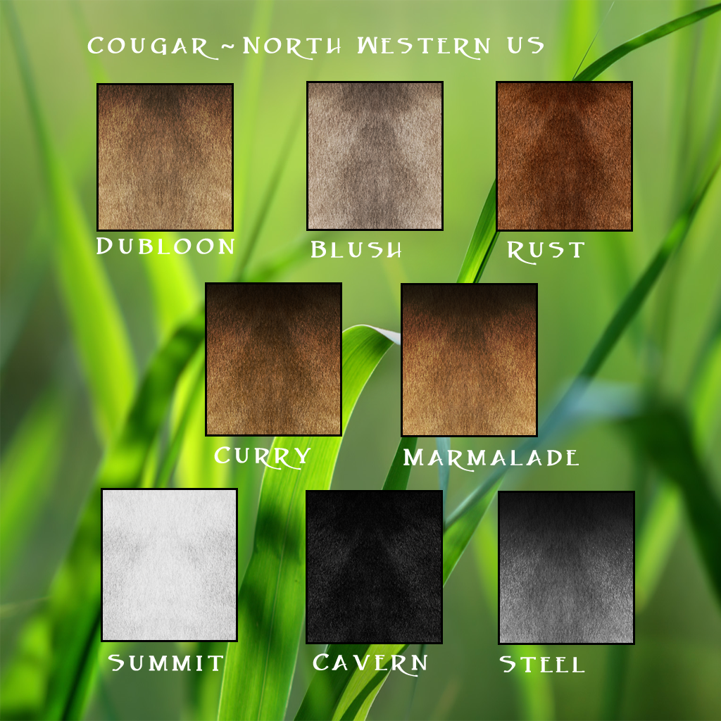 Color of cats fur - Cougar Nw Traits