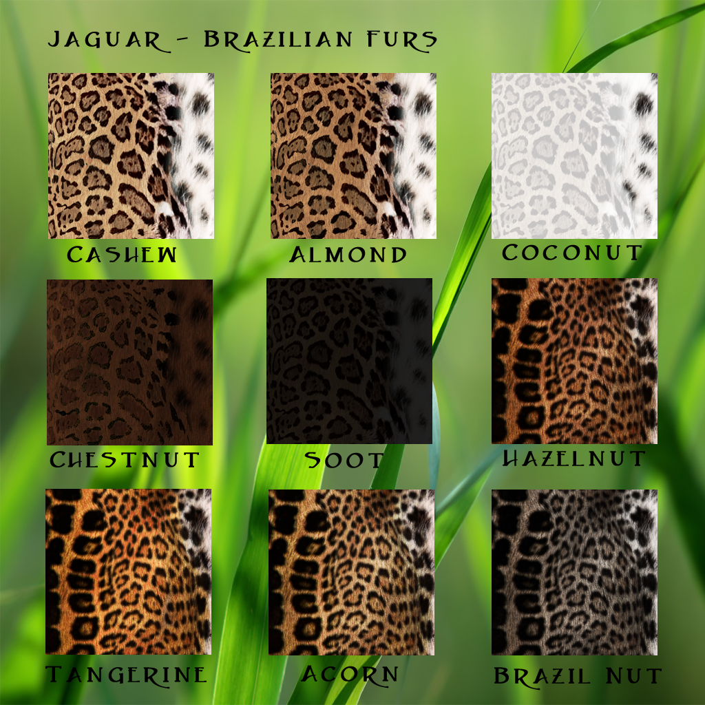 Jag Braz Furs Traits