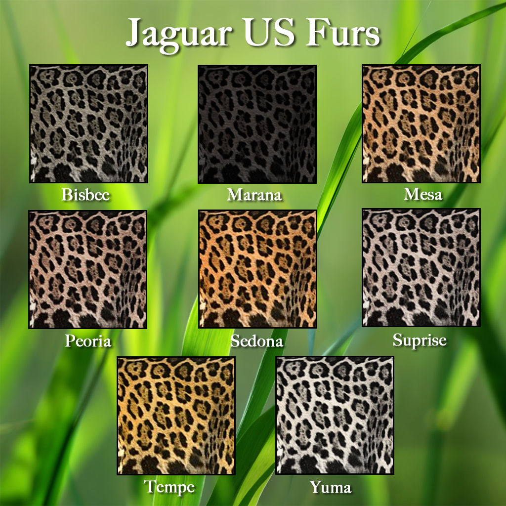 jaguar-us-2016