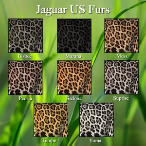 jaguar-us-2016