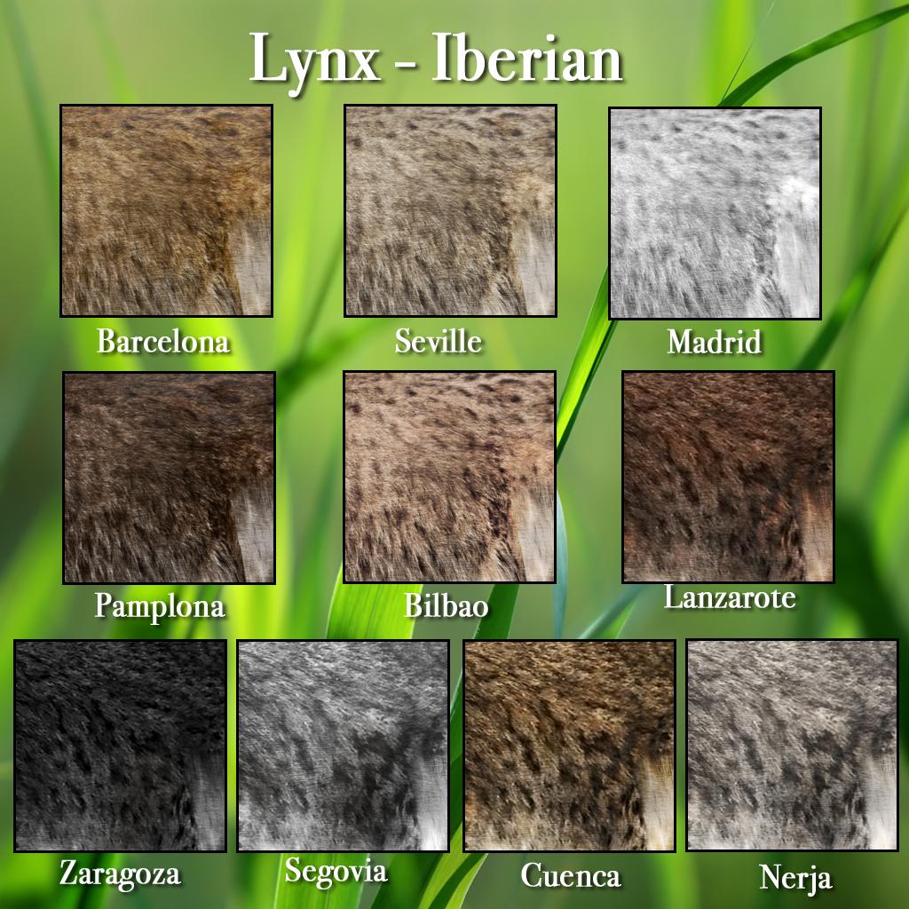 Lynx Iberian Fur