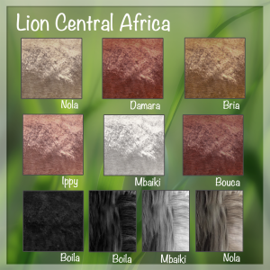 north-central-lions