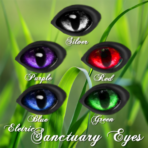 Sanctuary Eyes
