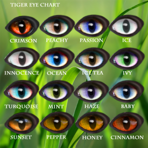 Tiger Eye Chart 2