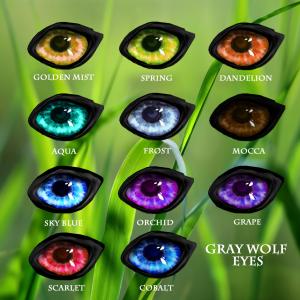 Wolf Eyes Grey1.1fixedTraits copy
