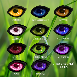 Wolf Eyes Grey2.1Traits copy