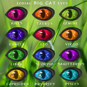 Zodiac BC Eye Chart