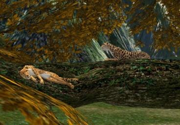 TreeFall_001