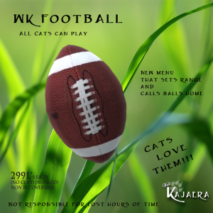 Celebrate the Football Season with a WK Football for your cats