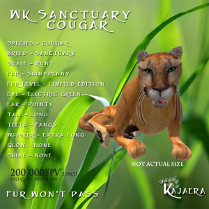 WK Sanctuary Cougar
