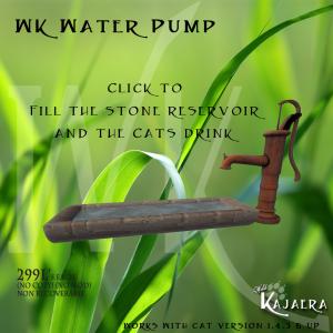 WK Water Pump