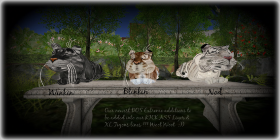 DOS of Extremes - New Additions - Winkin, Blinkin & Nod
