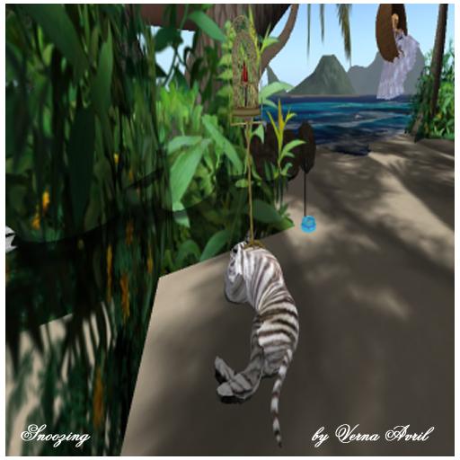Verna Avril -Sleeping Tiger