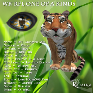 WK RFL Tiger OOAK