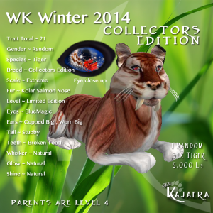 WK WInter CE 2014K