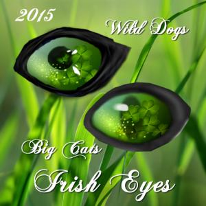 Irish Eyes 2015
