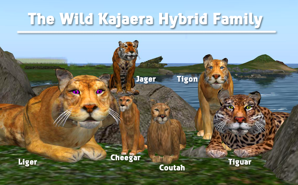 Hybrid Breeding – wildkajaerablog
