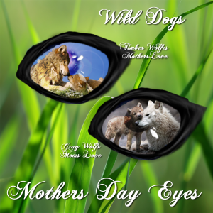 WD Mothers day eyes 2015