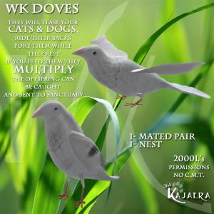 WK Doves
