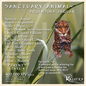 Sanctuary Argentina Jag