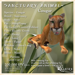 Sanctuary Cougar fix