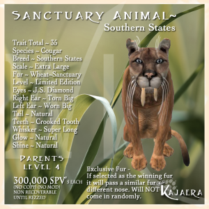 Sanctuary S.State Cougar