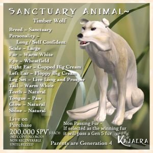 Sanctuary Timber Wolf