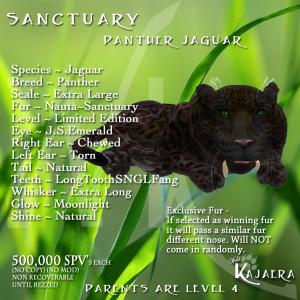 SanctuaryCat Panther fixed