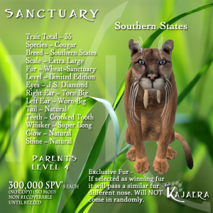 Sanctuary Cougar S States