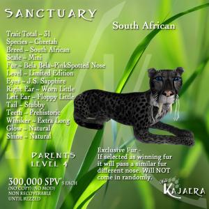 Sanctuary S African