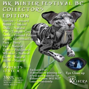 The Winter Festival Big Cat