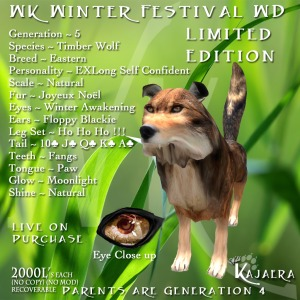 Winter Festival Wild Dog
