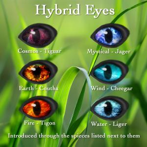 Hybrid Eyes 2016
