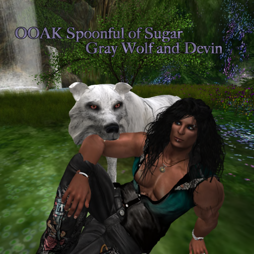 Devin and gray wolf.png
