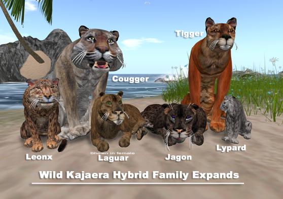 hybrid-family-2