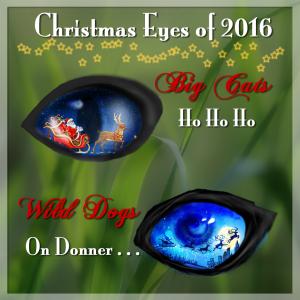 christmas-eye-2016