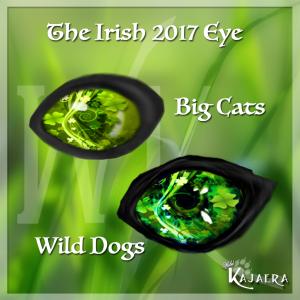 Irish 2017
