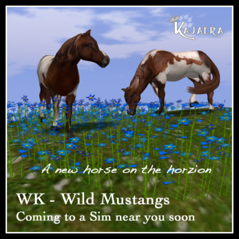 Horse coming soon