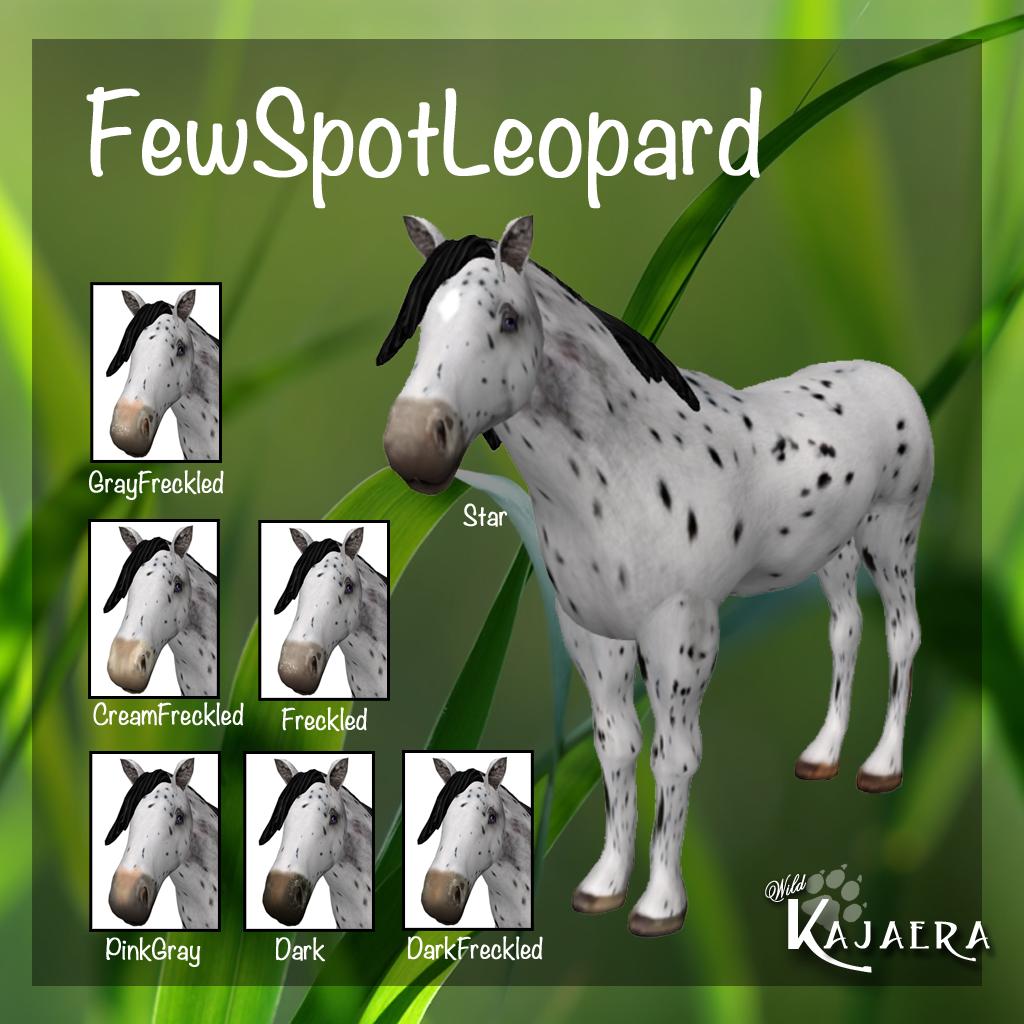 FewSpotLeopard