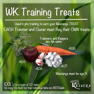WM Training Treats