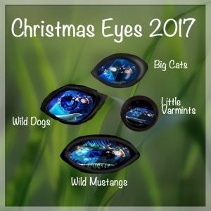 Chritsmas EYEs 2017