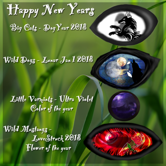 New Years Day Eyes 2018