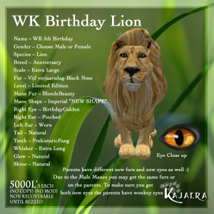 WK 5th Birthday Lion